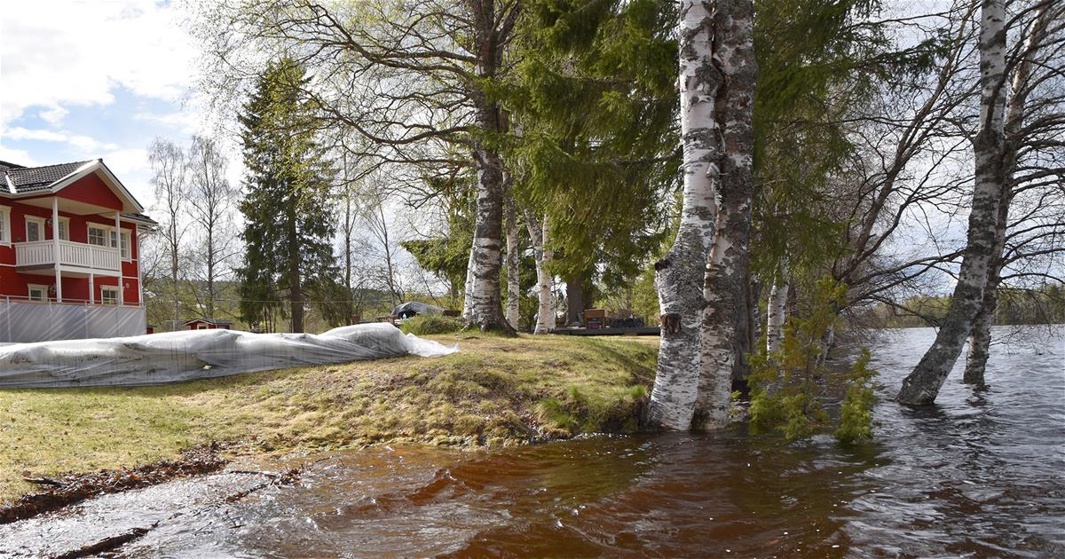 Apteekit Rovaniemi